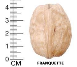 franguette