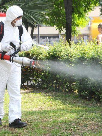böcek ilaçlama şirketi